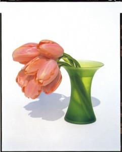 YOSHIHIKO UEDA《FLOWERS FLW-001, 1996》1996/2000, ED 1/10, 91.8 x 73.1 cm, 36 1/8 x 28 3/4 in., type C-print